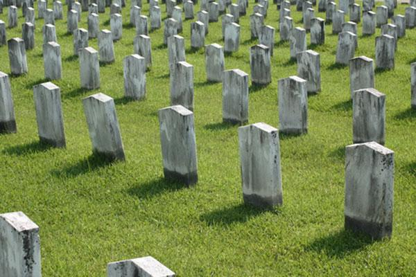 Killer Apps: Will Small Business Mourn Death of the Web?