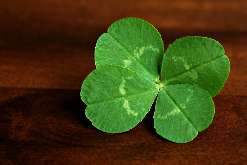 Entrepreneurs Downplay Role of Luck In Their Success