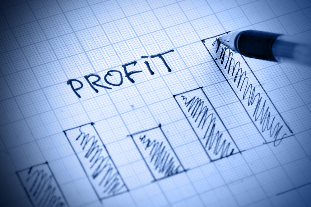 What is a Profit and Loss Statement?