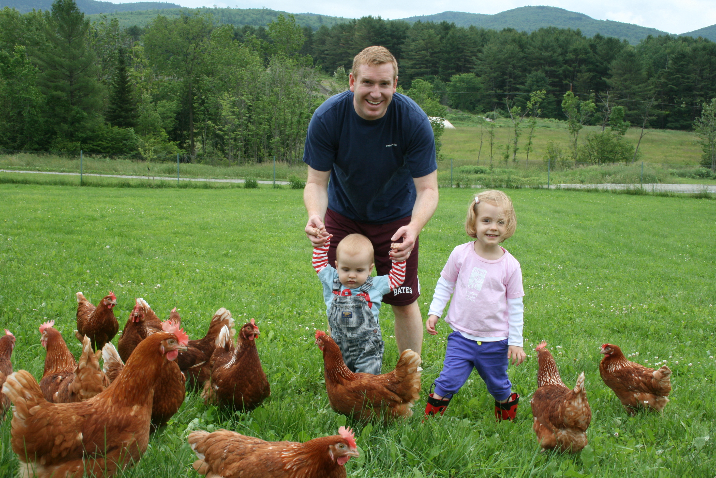 Organic Egg Farm Establishes New Pecking Order