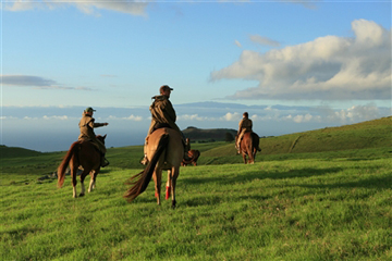 Horse trail ride business in Hawaii – Kamuela, Hawaii