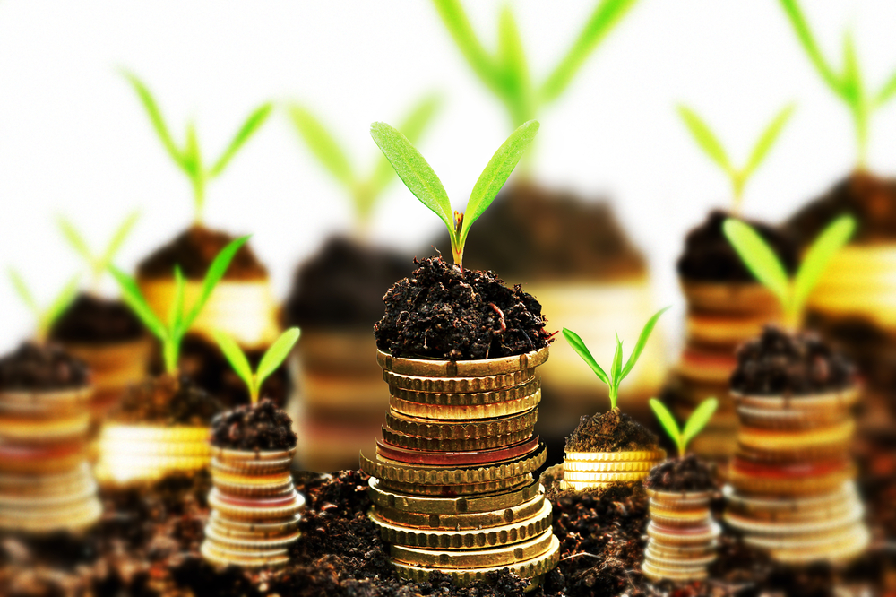 Using Revenue-Based Financing to Grow Your Business