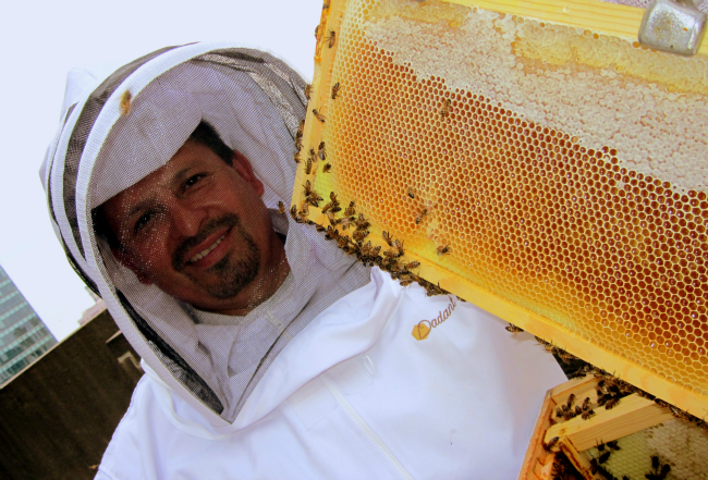 My Job Description: The Beekeeper