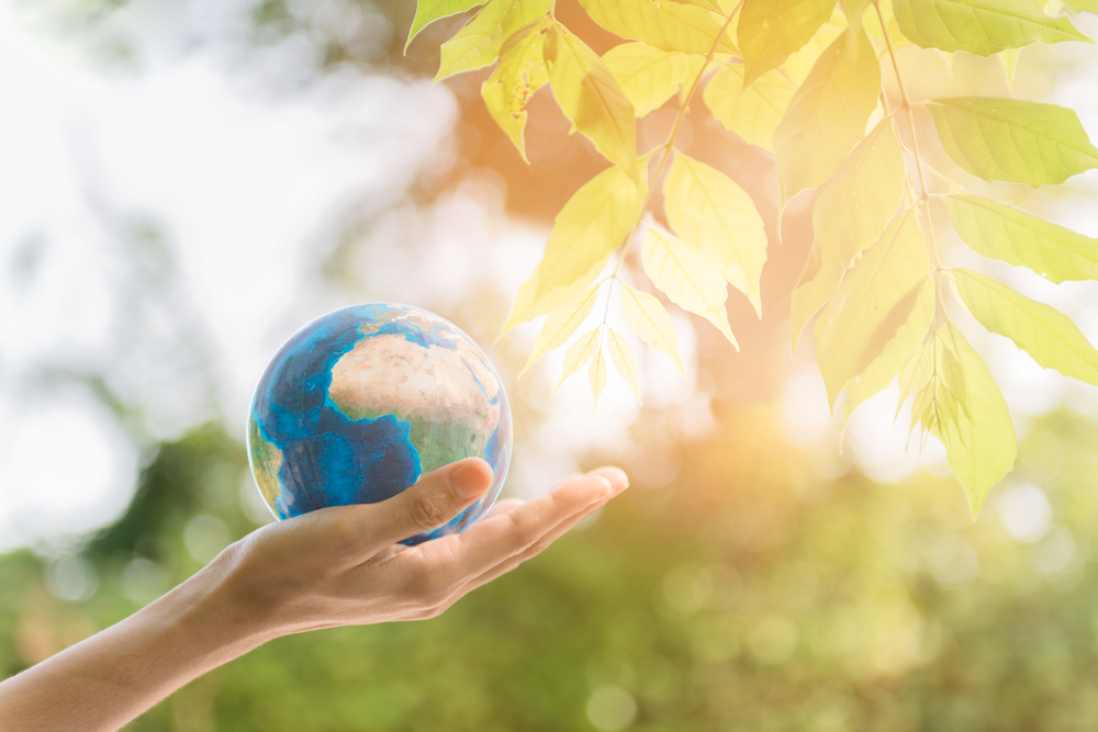 Corporate Social Responsibility Definition And Examples