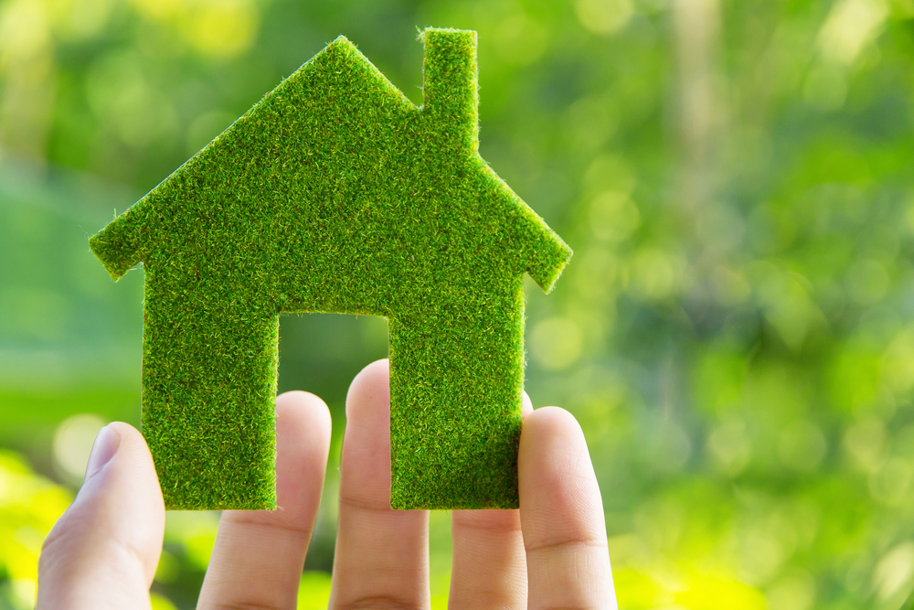 Green Building Entrepreneurs Think Sustainability is Key to Economic Growth