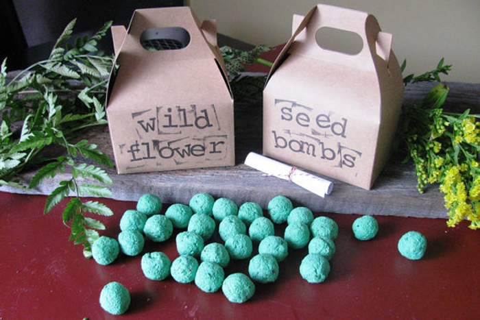 Wildflower seed bomb, $8