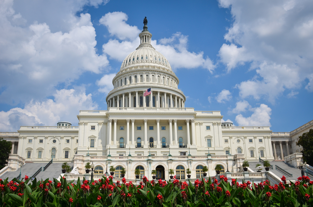 How to Land a Small Business Government Contract