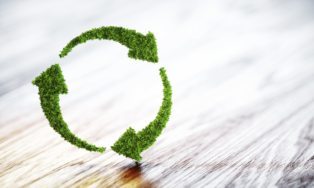 5 Certifications For Green Marketing